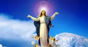 Immaculate Conception / Year of Mercy